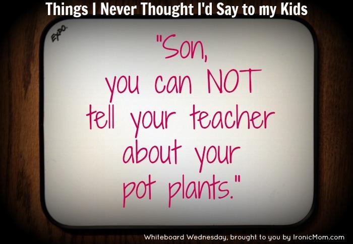 WW Pot Plants