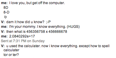Google Chat With Viv