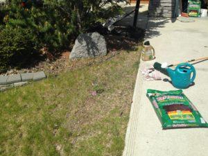 Look, I'm gardening!