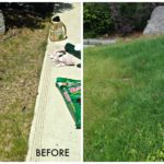 Oh, the Places I Grow Grass: Before and After